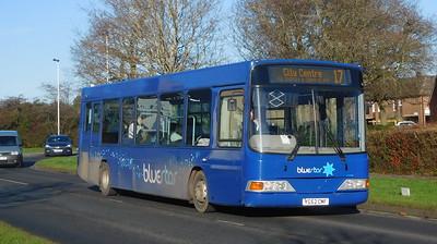 BlueStar 3412 - YG52CMF - Lordshill