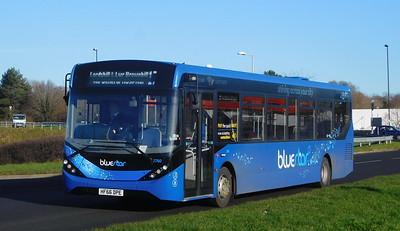 BlueStar 2760 - HF66DPE - Lordshill