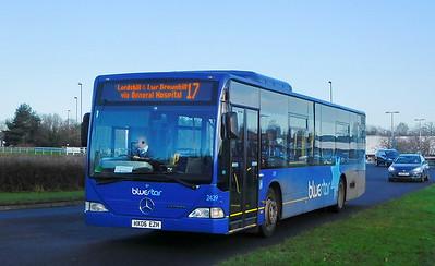 BlueStar 2439 - HX06EZH - Lordshill