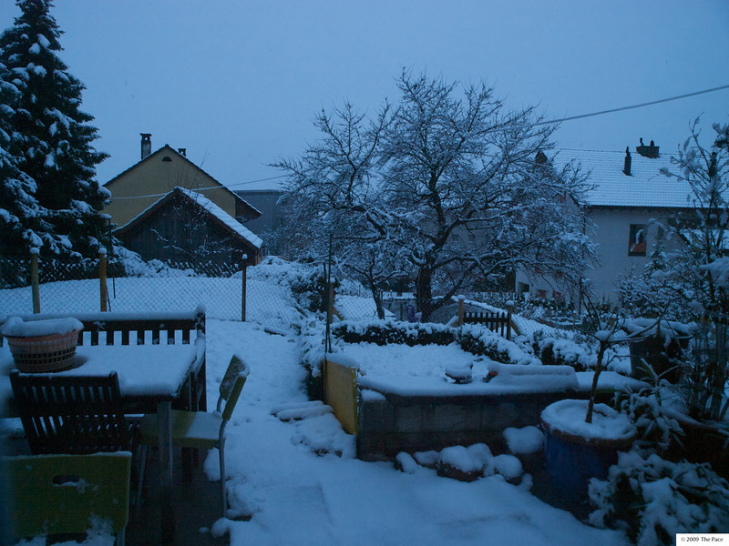 Tuesday 8th December 2009 - The first snowfall of winter which came as a complete surprise for me last week