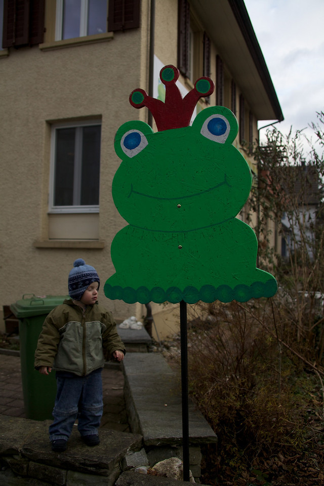 Sunday 12th December 2010 - Luc says hello to the frog king