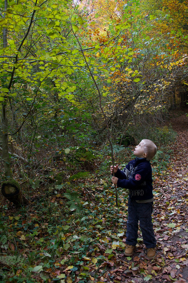 Sunday 31st October 2010 - Cai decides that more leaves need to escape