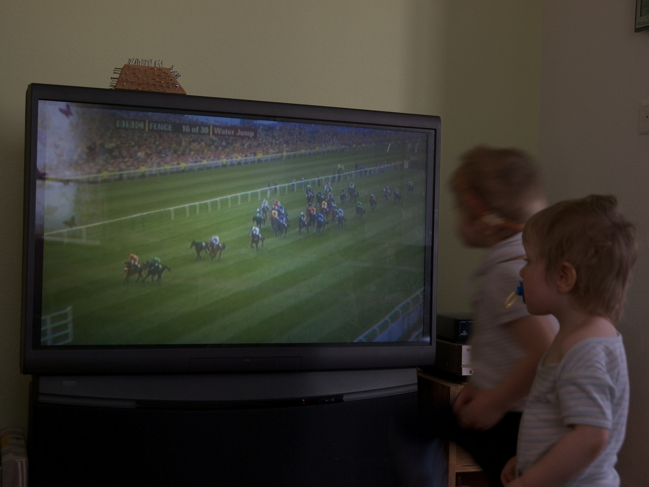 Sunday 11th April 2010 - The boys take a break from annoying each other to watch the grand national