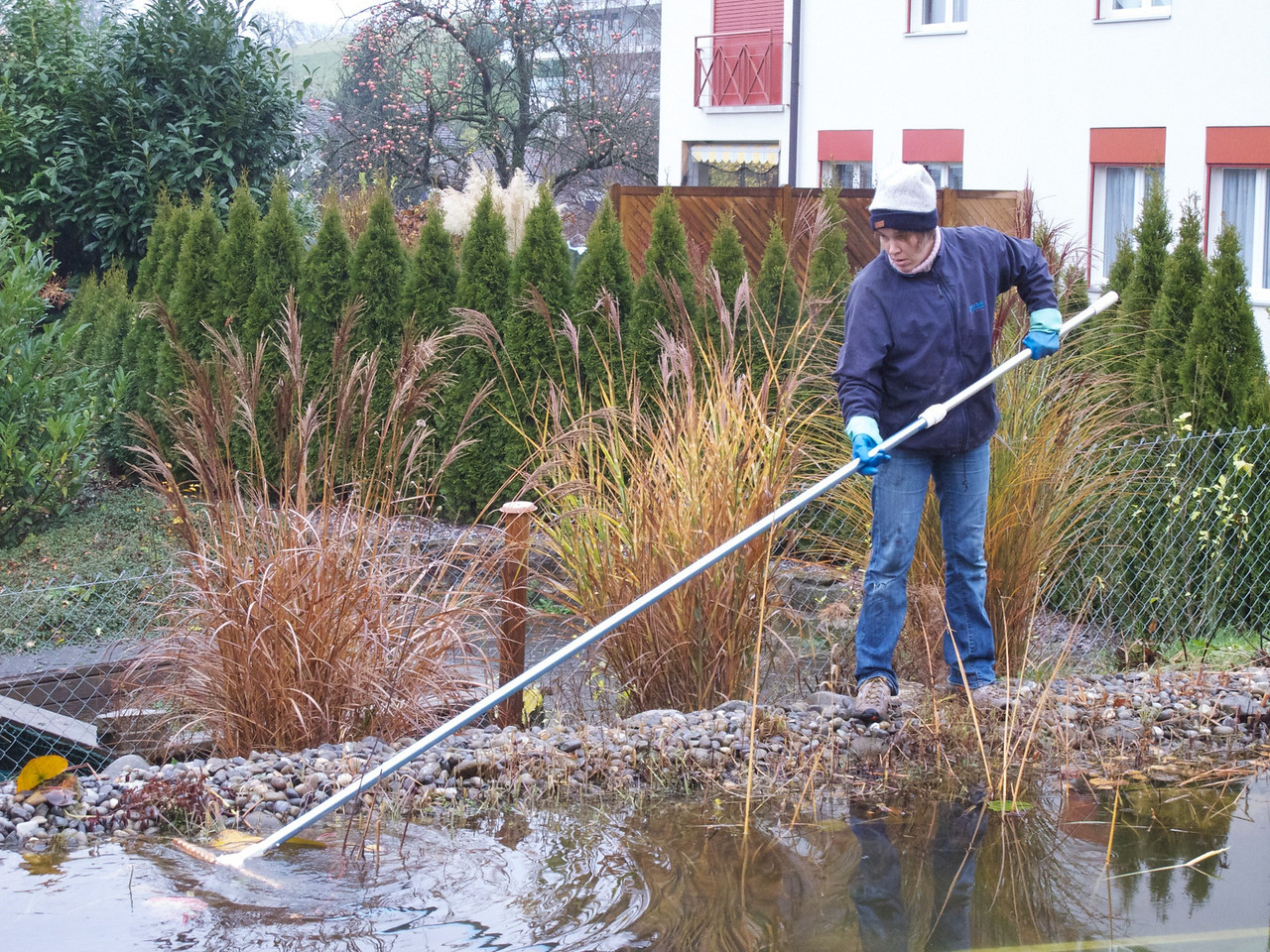 Tuesday 23rd November 2010 - Kerstin rakes the leaves out of the pond