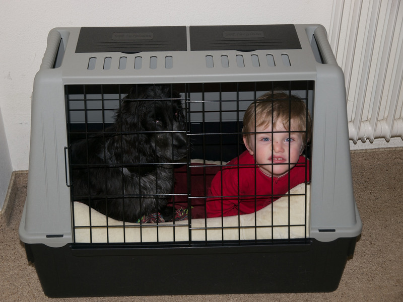 Monday 27th February 2011 - Luc got into big trouble for this, the boy is supposed to be the dogs safe place not for Luc to sleep in