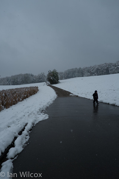 Monday 29th Oct - Luc lags behind collecting snow