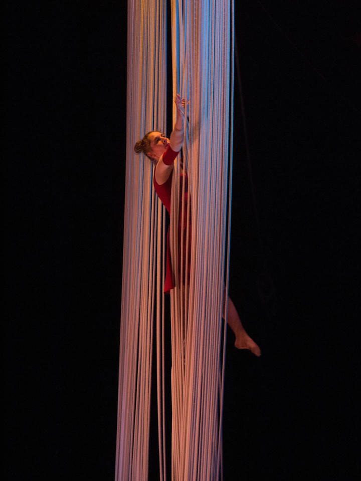 Tuesday 10th April 2012 - Circus Monti