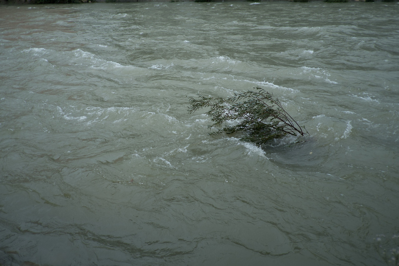 Sunday 14th October 2012 - There really is a lot of water in the river at the moment