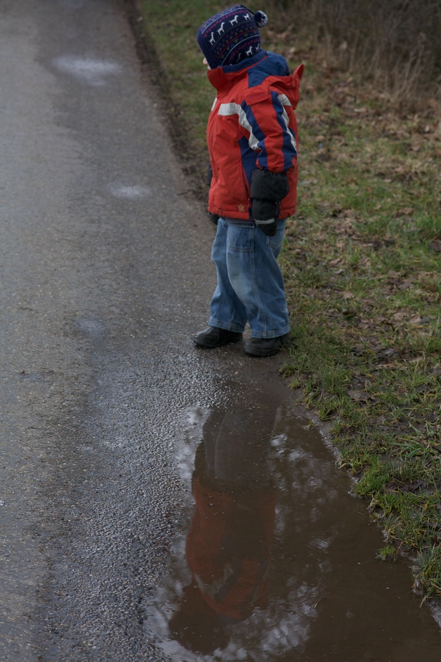 Monday 30th Jan 2012 - Luc was following Grigors example and refuses to behave like a good little boy and stay OUT of the puddles