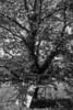 20131013-DSCF8925-Edit