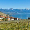 CULLY - suisse