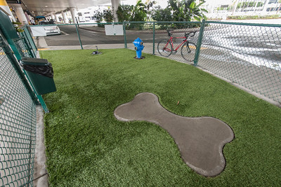 Pet Relief Area Outside T7