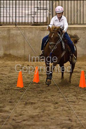 LB Horse Shows