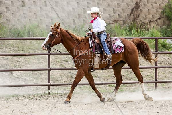 Western Pleasure Horsemanship Walk-Trot