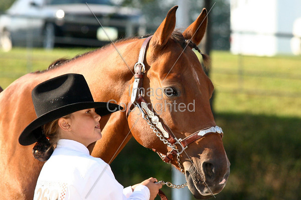 Showmanship at Halter (7-9)