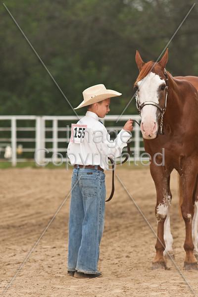 7-9 Showmanship at Halter