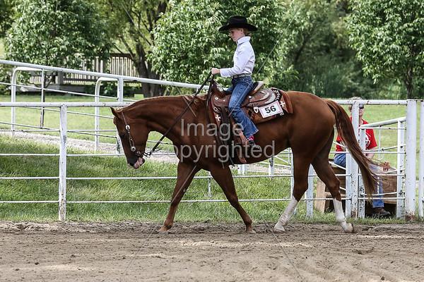 Western Pleasure Horsemanship