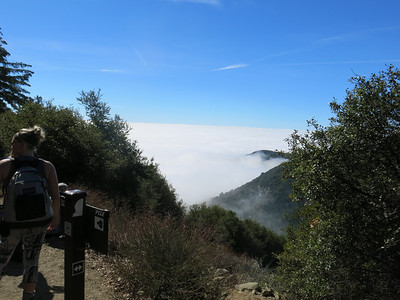 2014 Conditioning Hike Mt Wilson from Sierra Madre