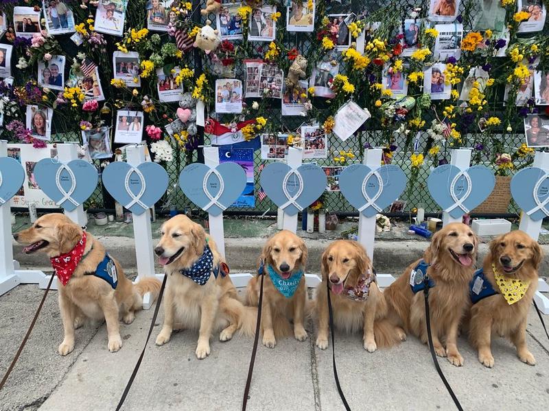 Comfort Dogs_Hearts of Mercy_Memorial Wall