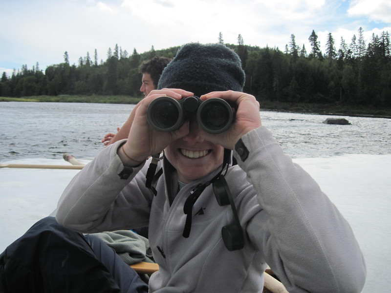 Moose-watching by canoe on the Allagash