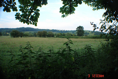 Views from back of Margaret's garden into neighbor's field