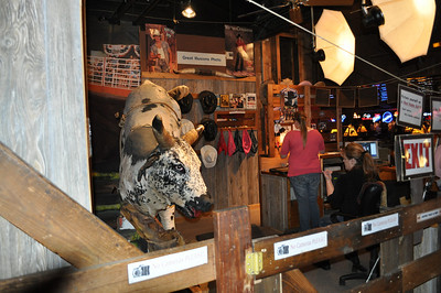 Want your photo taken on the bull?
