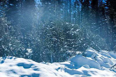 RSV 2nd Snow 2013-29