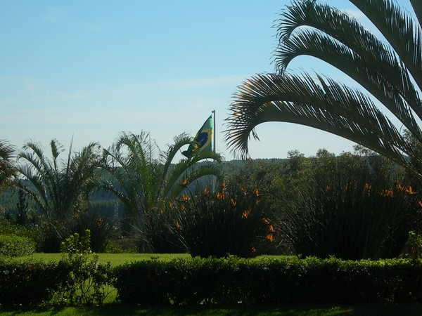 Campinas Brazil LDS Temple