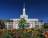 MountTimpanogosTemple31