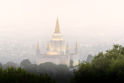 Foggy Oakland