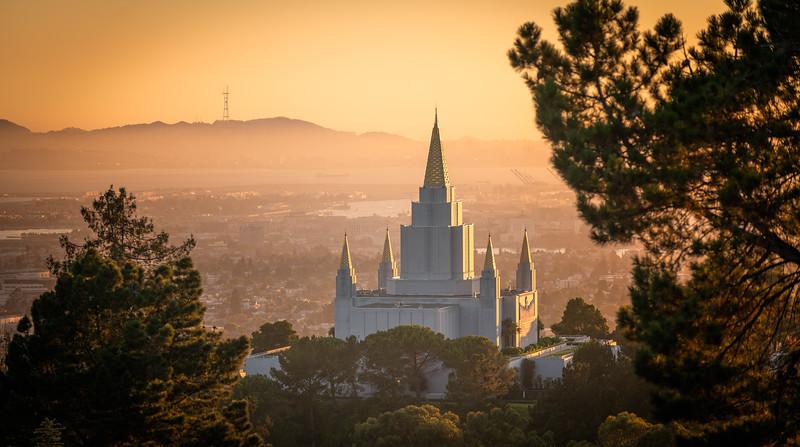 Golden Oakland