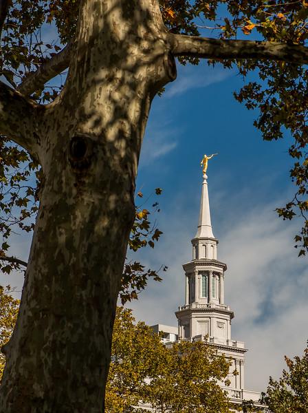 PhiladelphiaTemple10