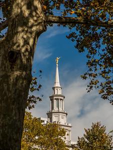 PhiladelphiaTemple11