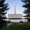 Provo Utah Temple Morning