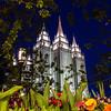 Salt Lake Temple Morning Flowers