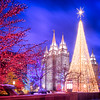 Salt Lake Christmas Tree Lights