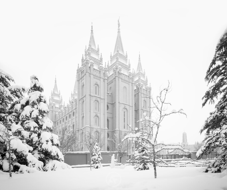 Snowy Salt Lake Black and White