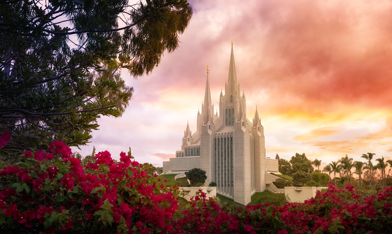 San Diego Temple Flowers