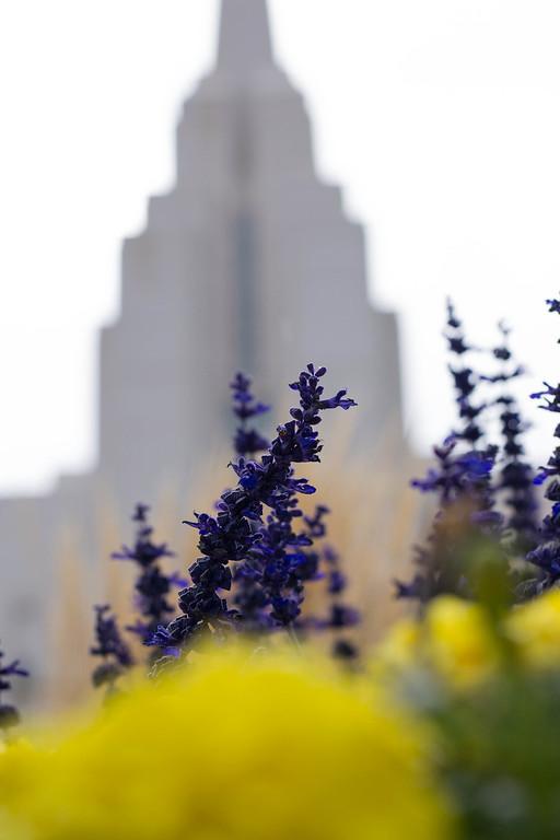 Rexburg Idaho temple