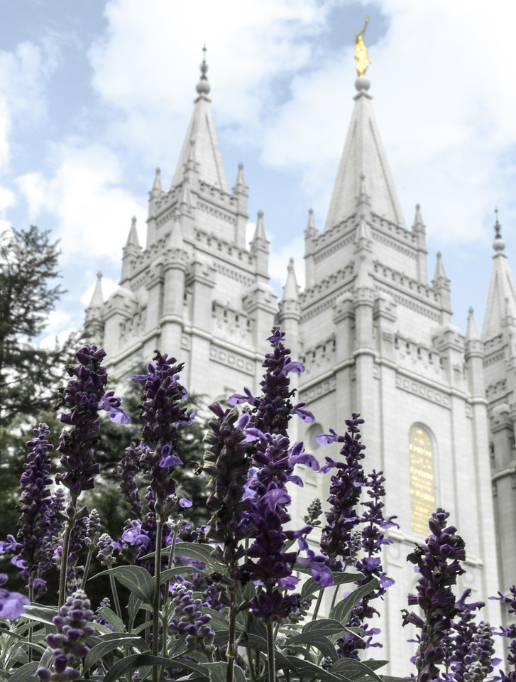 Salt Lake City Temple Spring Time