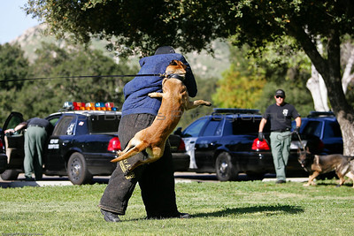 K9 Training El Monte Park-63