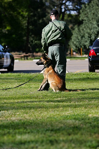 K9 Training El Monte Park-62