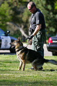 K9 Training El Monte Park-26