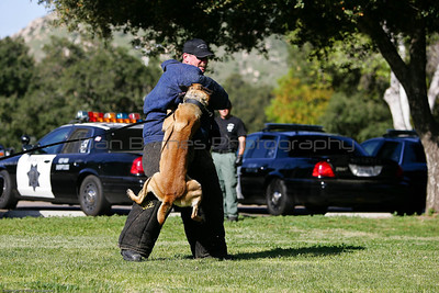 K9 Training El Monte Park-81