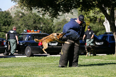 K9 Training El Monte Park-65