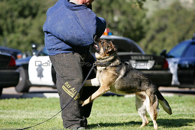 K9 Training El Monte Park-45