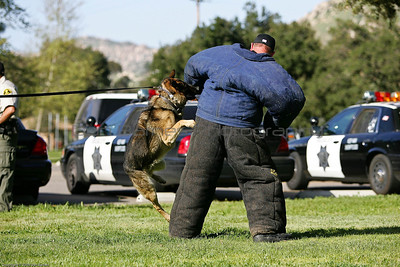 K9 Training El Monte Park-36