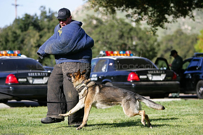 K9 Training El Monte Park-35