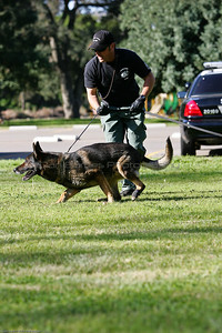 K9 Training El Monte Park-96