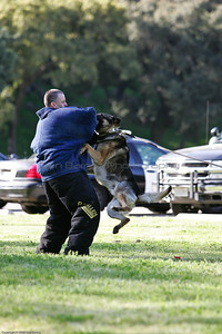K9 Training El Monte Park-28